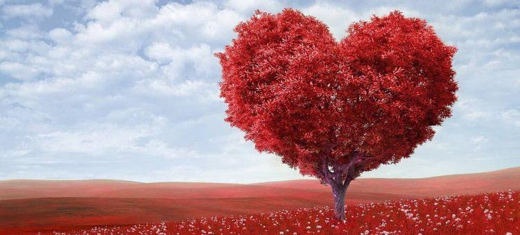 heart-shape-1714807_960_720-min