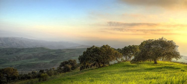 landscape-1590885_960_720