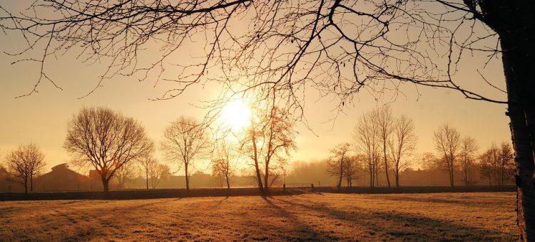 sunrise-580379_960_720.jpg